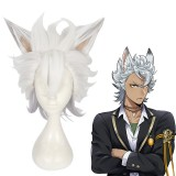 35cm Short White&Gray Mixed Disney Twisted Wonderland Jack Howl Wig Synthetic Anime Cosplay Wigs CS-446A